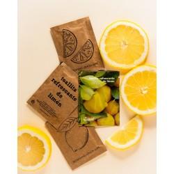 Toallitas refrescantes aroma limón con sobre de papel kraft